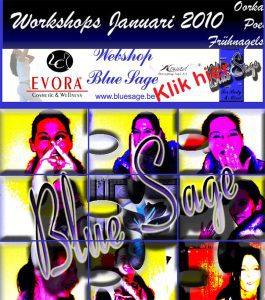 History Website Blue Sage